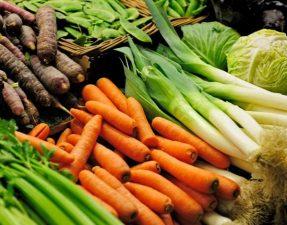vegetables-large_trans++eo_i_u9APj8RuoebjoAHt0k9u7HhRJvuo-ZLenGRumA