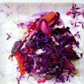 20110324-144034-bittersweet-salad-thumb-625xauto-149090