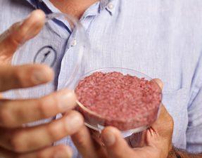 cultured-beef-03-7235289a98d8b857165d8d831abbc00113b30357-s900-c85