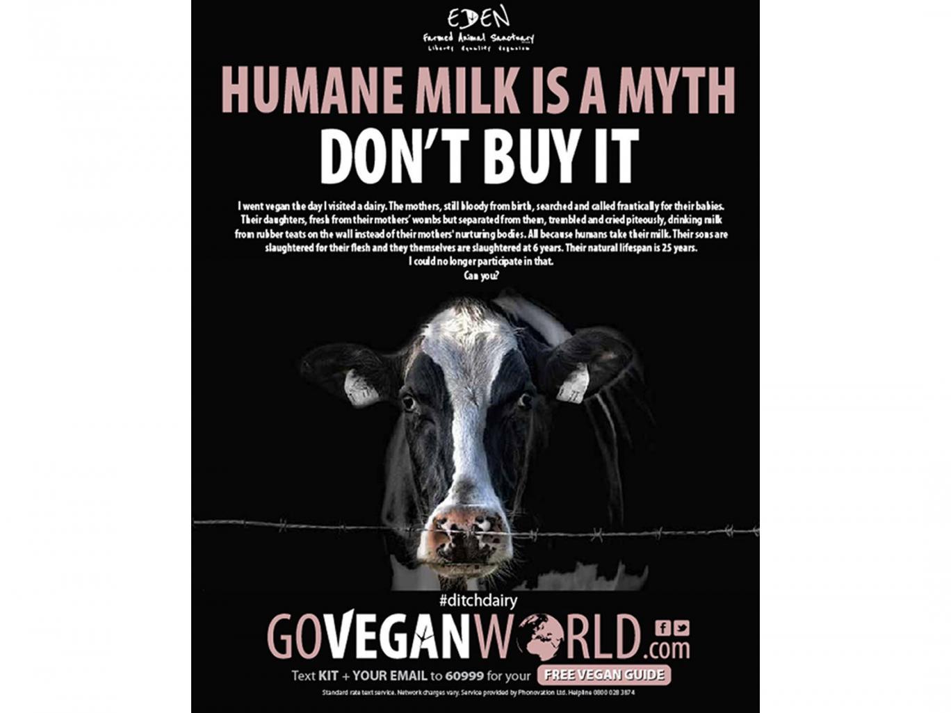 vegan-world-milk-ad vegan seo words