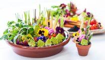 Crudité garden by Celia Clyne Catering