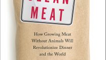 Clean-Meat-Cover-Large